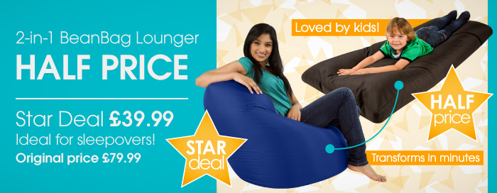 2-in-1 Bean Bag