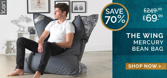 Wing Giant Bean Bag - HP Promo