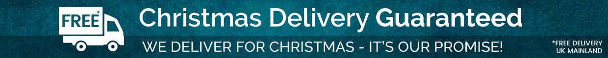 Fast Free Christmas Delivery Guaranteed