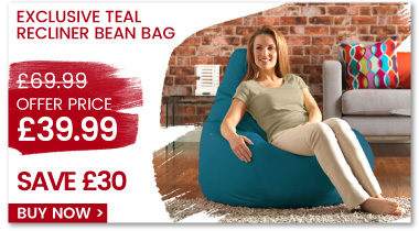 Sale Offer - Recliner Teal